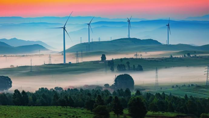 圆桌|双碳目标下发展绿色金融,警惕潜在金融风险和洗绿风险