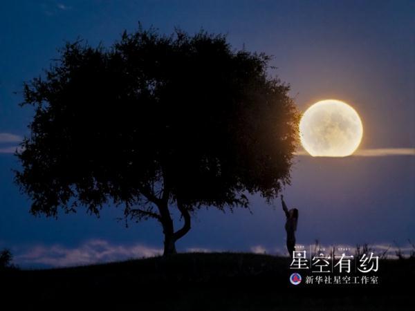 北京市天文摄影爱好者王俊峰2019年8月15日(农历七月十五)在黑龙江大庆拍摄的圆月。