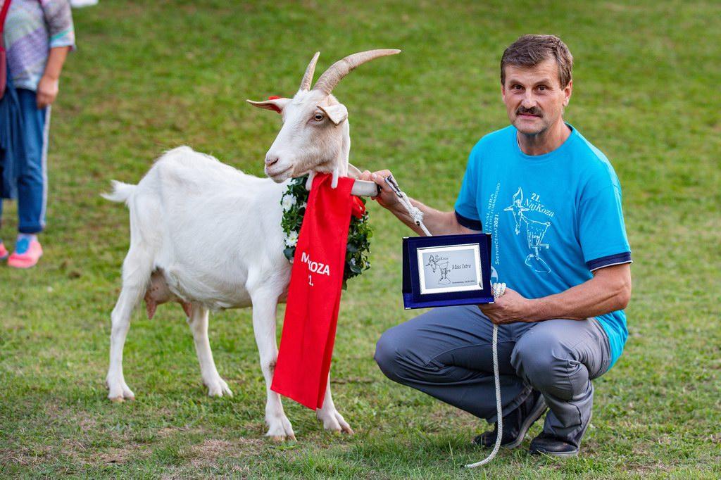 """2021年9月18日,在克罗地亚斯维特文切纳特市举行的山羊选美比赛中,获胜的""""美羊羊""""山羊比拉与主人弗兰科·桑德里克合影留念。"""