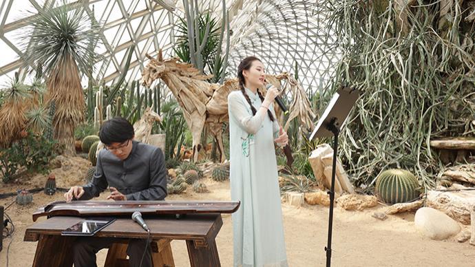 非遗音乐响起,这场在植物园里举办的中秋游园会别具韵味