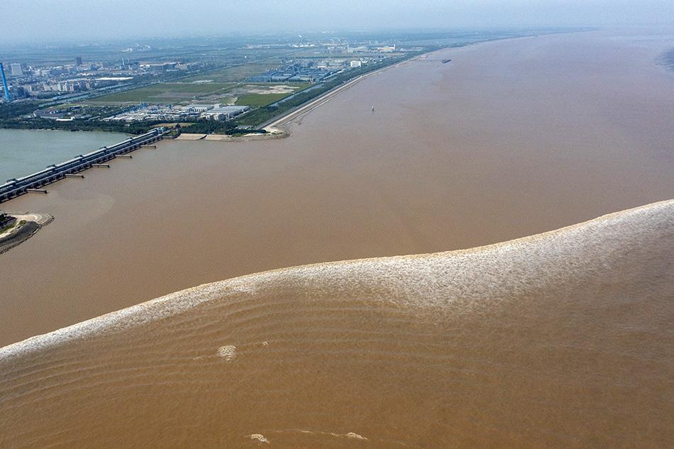2021年9月24日,钱江潮经过浙江省绍兴市上虞区海塘。