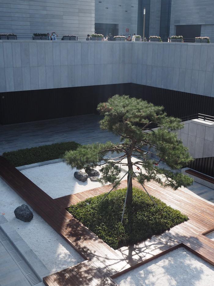 苏州博物馆西馆 下沉式庭院中的松柏