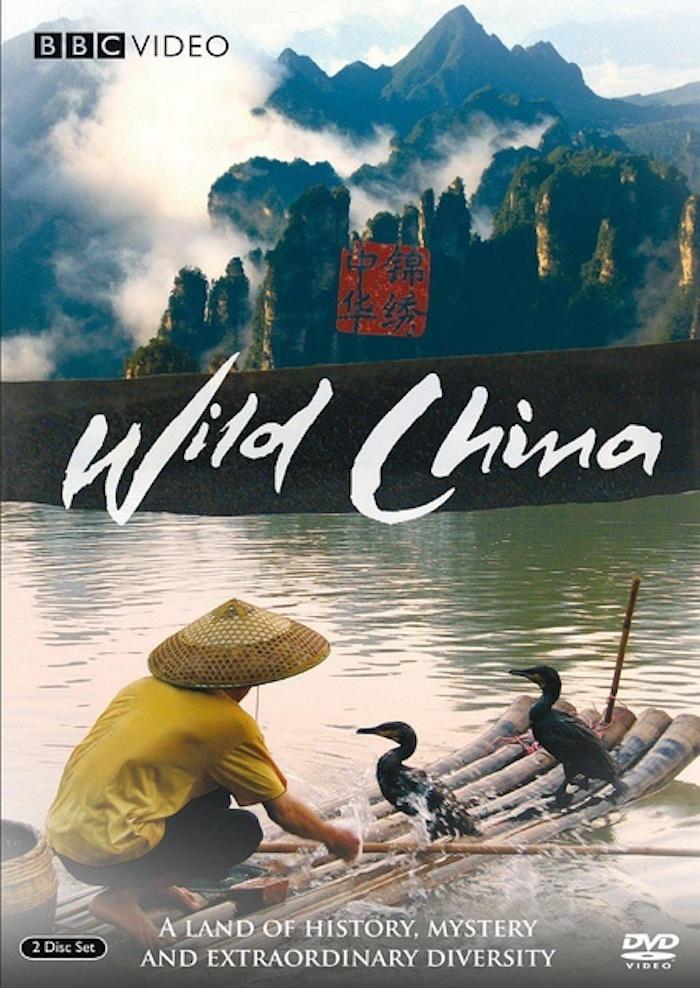 假期如果不远行,这些纪录片带你感受中国