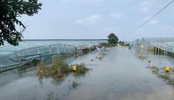 强降雨致陕西大荔漫堤决口,直击救灾现场