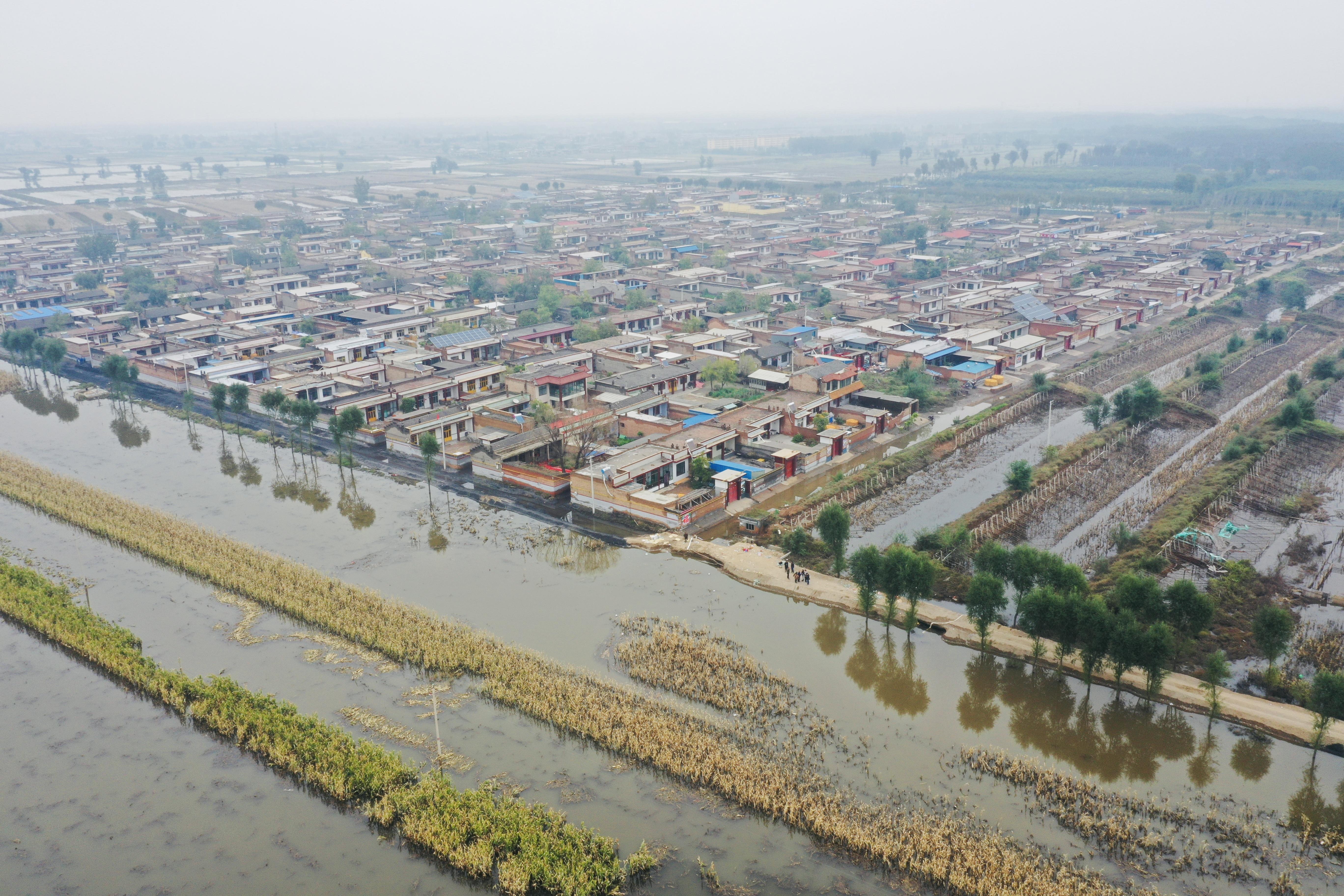 10月12日,山西介休桑柳树村。澎湃新闻记者 柯颖琨 图