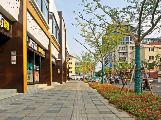 """上海70条道路入围""""精品示范路""""名单!有你家附近的吗?-第3张图片-蓝狮娱乐"""