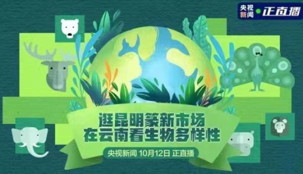 逛昆明篆新市场,在云南看生物多样性