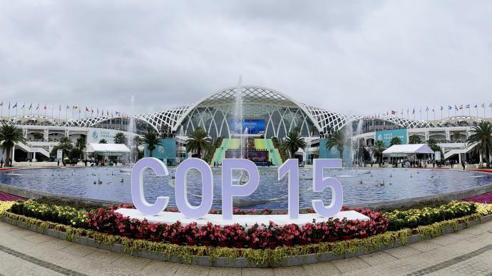 """古特雷斯:COP15为人与自然间达成""""永久和平协议""""奠定基础"""