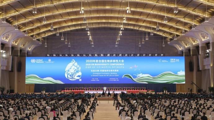 韩正出席《生物多样性公约》第十五次缔约方大会领导人峰会