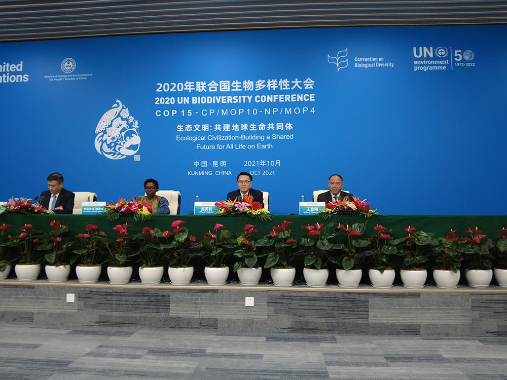 10月13日晚,联合国《生物多样性公约》第十五次缔约方大会(COP15)举行首场新闻发布会,介绍高级别会议成果。 万博max官网地址新闻记者 刁凡超 图