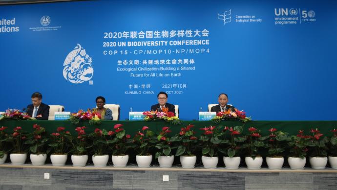 COP15 环境部:《昆明宣言》为全球环境治理注入新动力