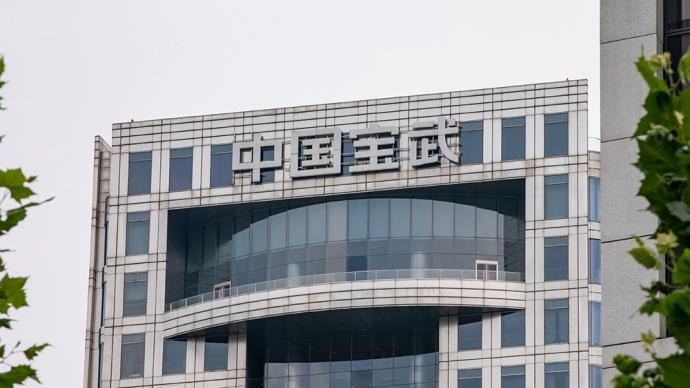 中国宝武拟推21个混改项目:大多计划于2至3年内培育上市