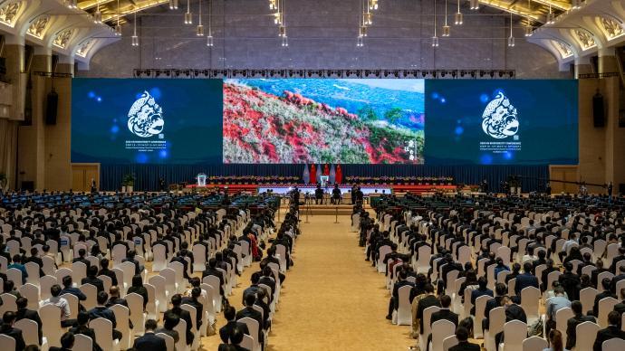 中国在COP15上诚意出资15亿,这笔钱该如何用在刀刃上