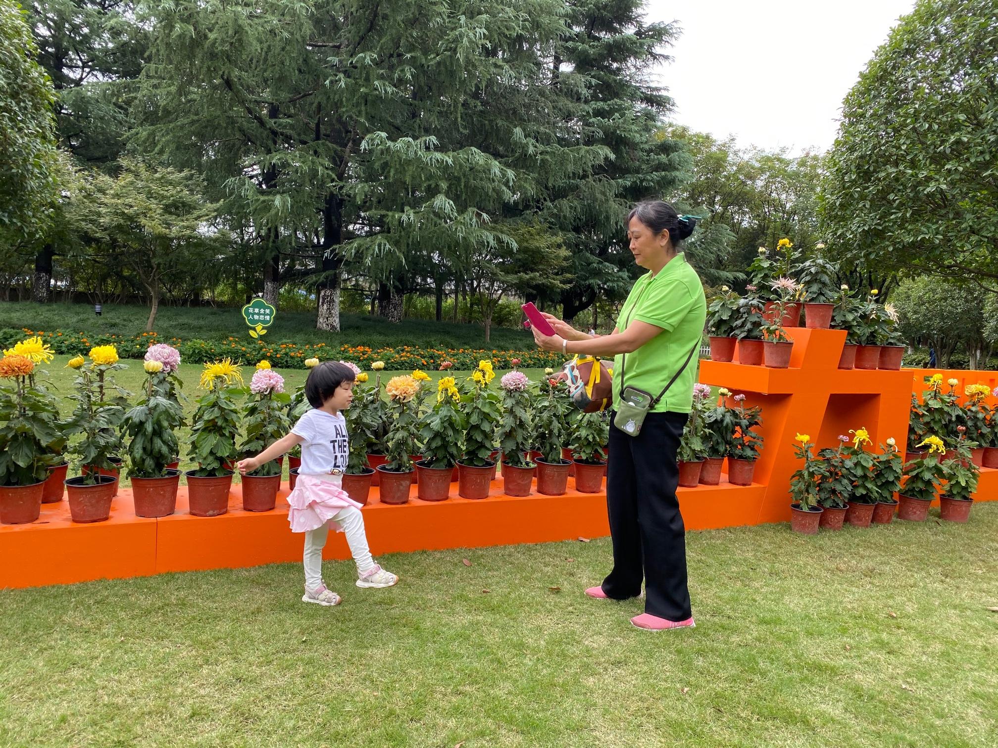 田园公园里,名贵菊花争相盛放。本文图均为澎湃新闻记者俞凯 图