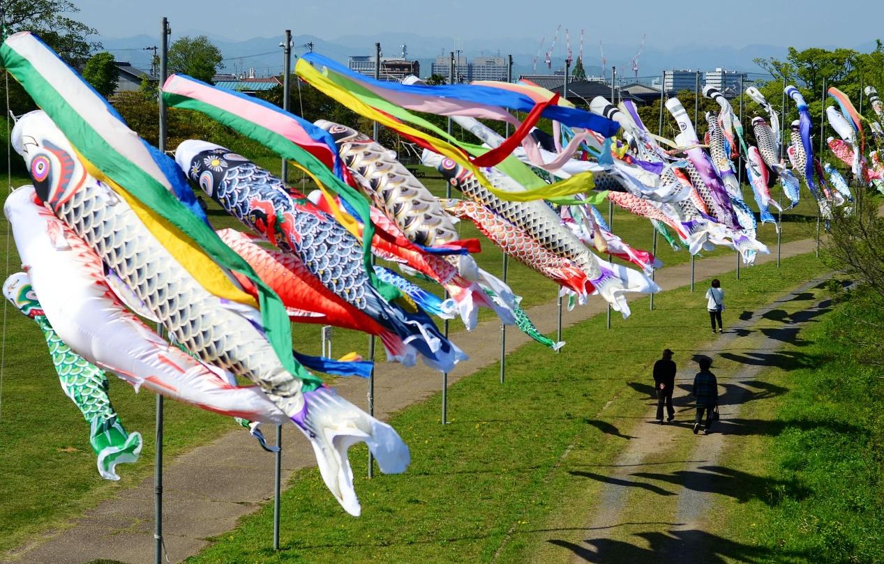 当地时间2021年4月19日,日本岐阜市柳津町境川绿道公园,一名父亲领着孩子在翻飞的鲤鱼旗下游玩。