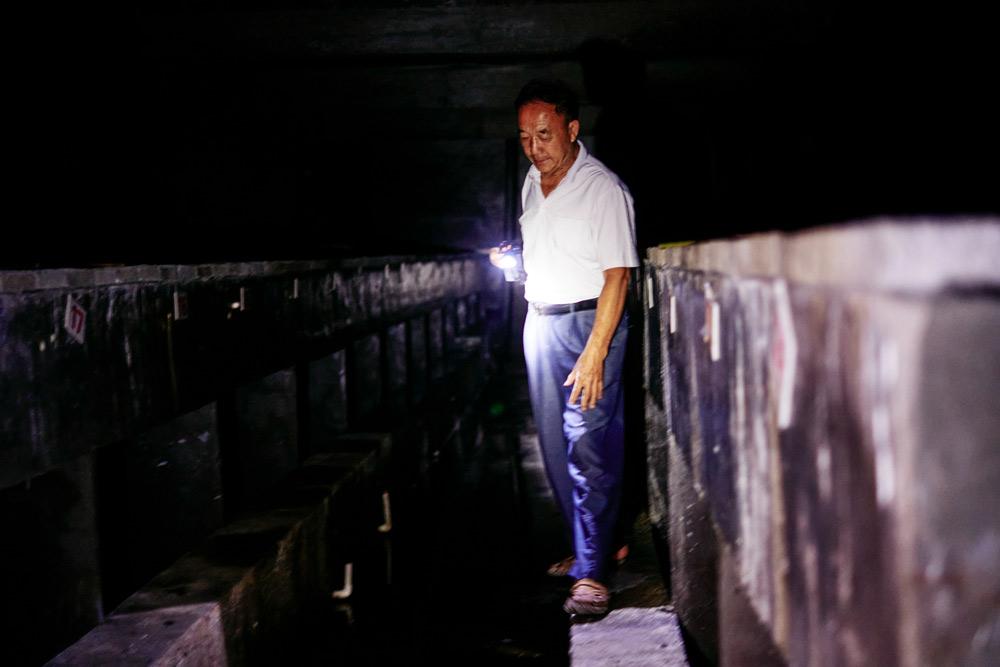 2021年9月,陈功明在他的养殖场内巡逻。