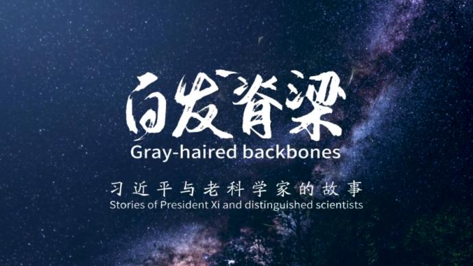 """礼待""""白发脊梁"""",习近平与老科学家的故事"""