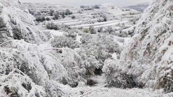 下半年首个寒潮预警发布,中东部局地降温可达14℃以上