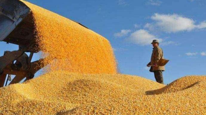 经济日报刊文:高质量推进粮食应急保障体系建设