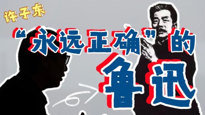 许子东视频专栏:鲁迅是怎样的一个文学家?
