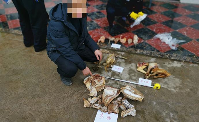 重慶警方偵破野生動物刑事案件38件,收繳兩千余只野生動物