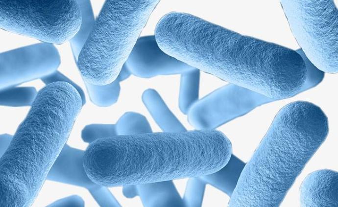七部門:加強動物病原微生物實驗監管,加強菌種保藏保存管理