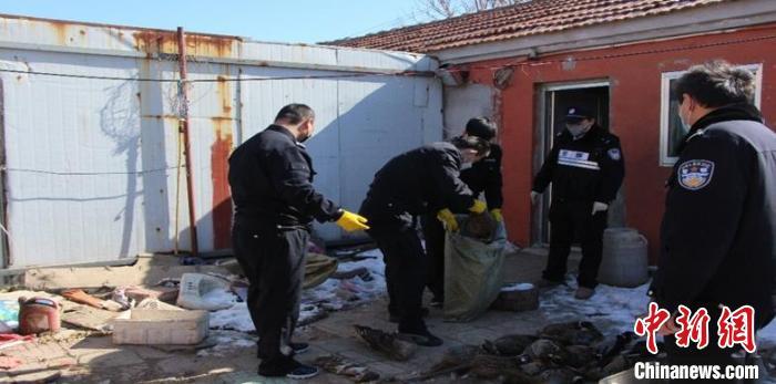 山东省公安机关森警部门重拳出击,严打破坏野生动物资源违法犯罪。山东省公安厅供图