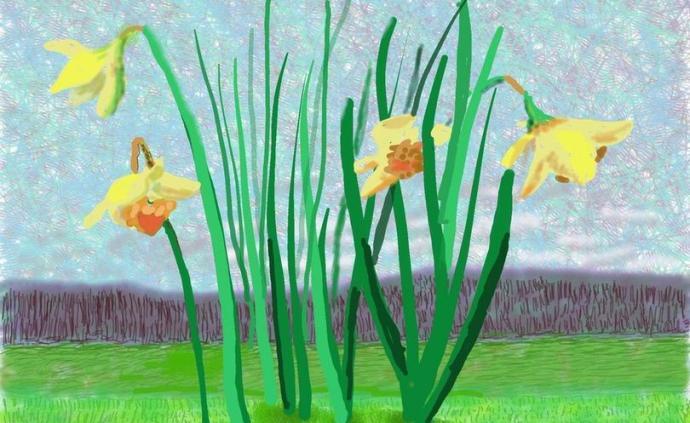 疫情無法隔離春天:霍克尼的水仙與提香的《圣殤》