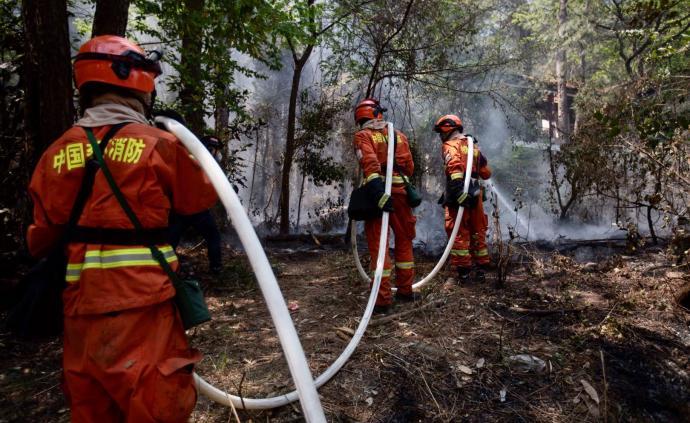 直播录像丨西昌泸山森林火场遇风再复燃,市区可见明火和浓烟