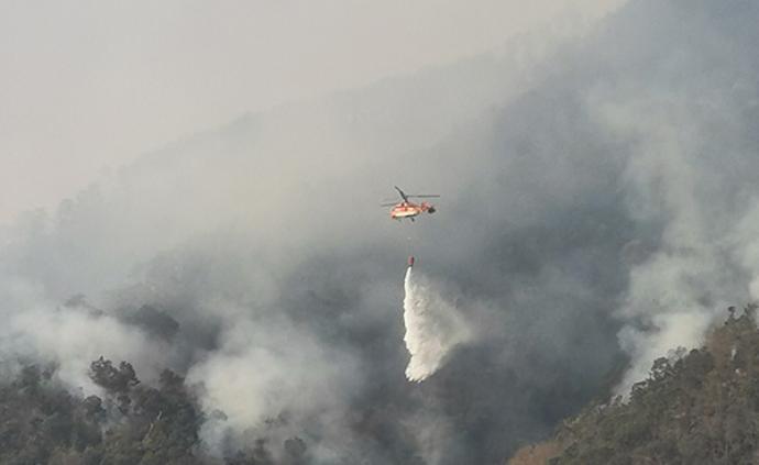 他们经历了什么?追记西昌山火中牺牲的19名专业扑火队员