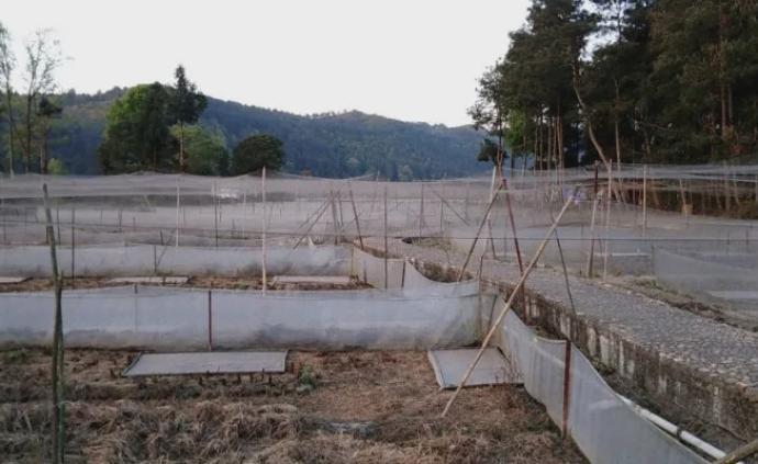 """江西""""野生动物禁食令"""":支持养殖户调整转变生产经营活动"""