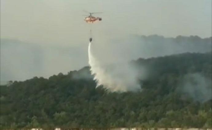 应急部森林消防局局长现场指导,逾850消防员凉山一线灭火