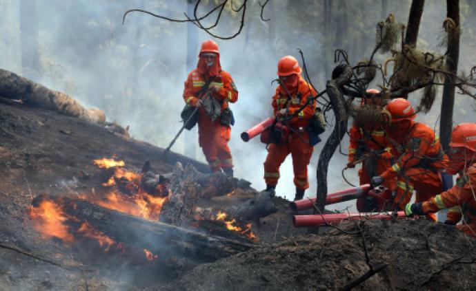 24小时内森林消防参与扑火13起,5起仍在扑救