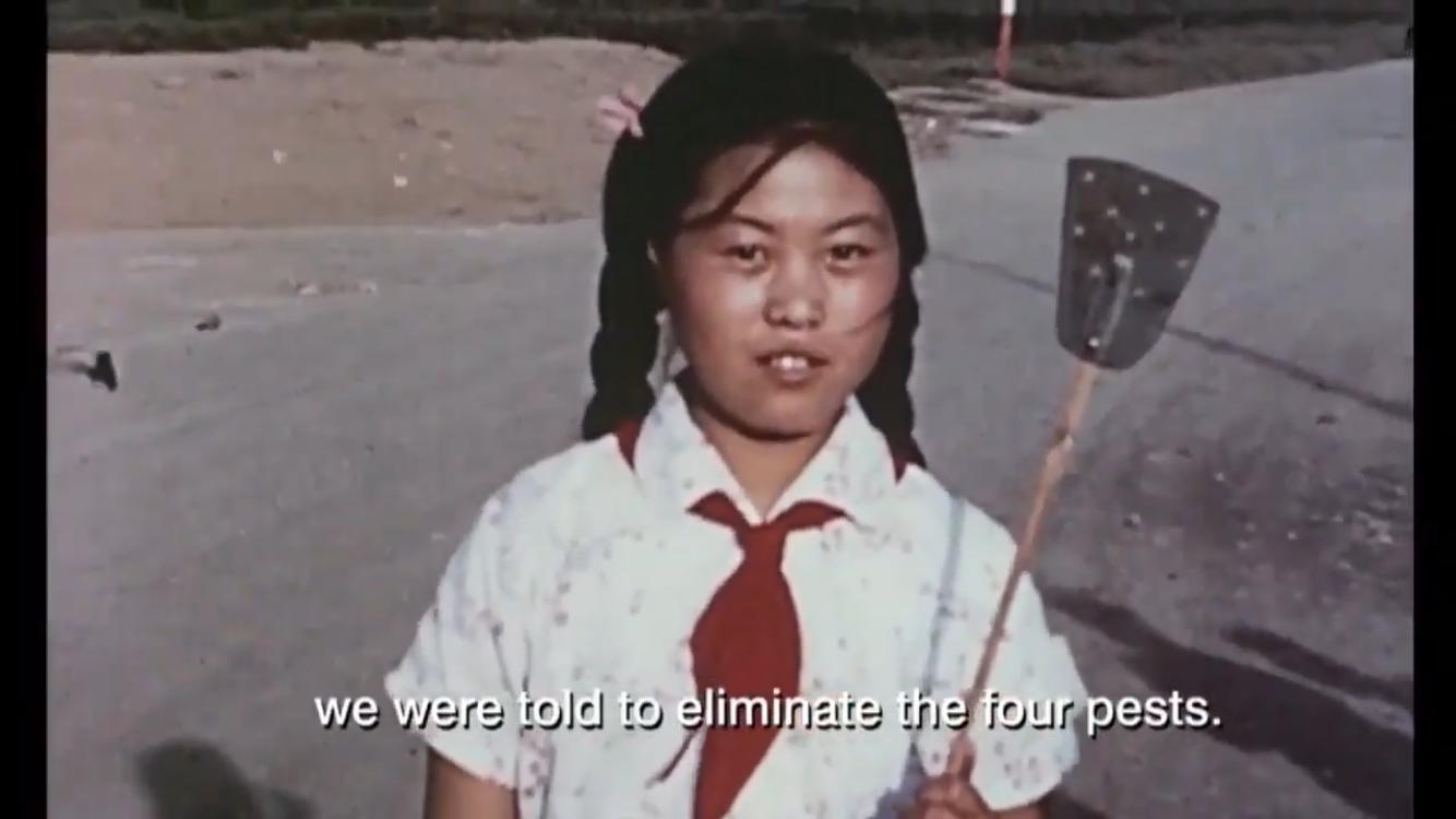 香港ParaSite艺术空间录像作品截图