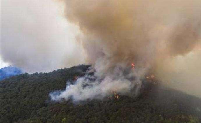 四川云南局部地區森林火險達到極度危險級別,兩部門積極應對