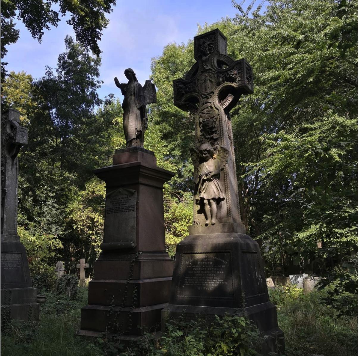 """来自""""陶尔哈姆莱茨区公墓公园之友"""" (Friends of Tower Hamlet Cemetery Park) 社交媒体"""