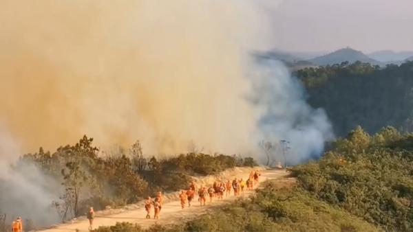 昆明禄劝森林火灾80秒灭火全纪实