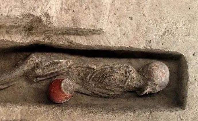 浙江發現八千年前人類遺骸,入圍全國十大考古新發現初評