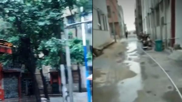 广东2儿童确诊溯源:一人母亲接触外籍病例