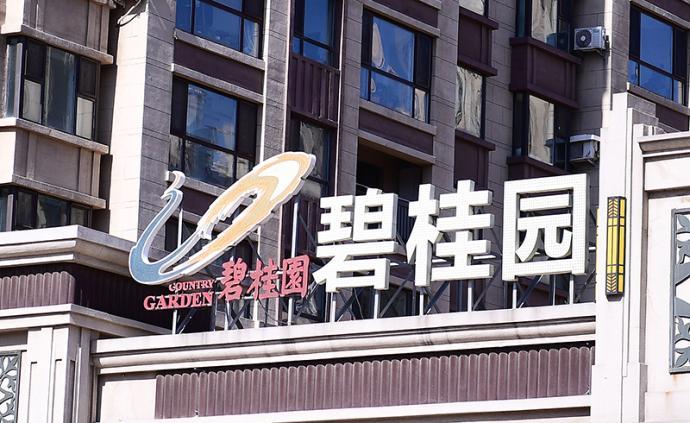 """碧桂园回应""""裁员3万人"""":2.5万人系转岗"""