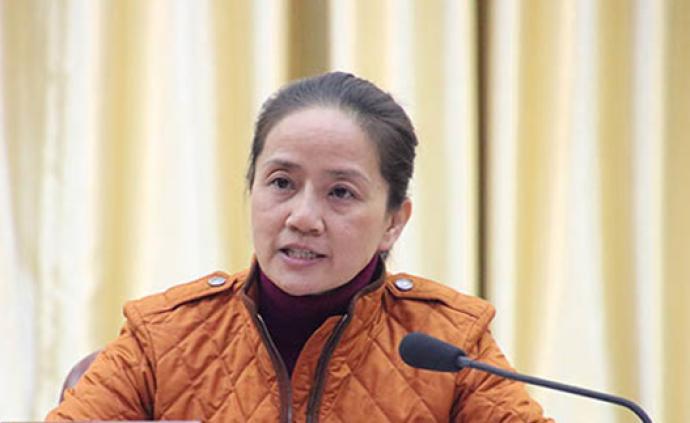 廣西崇左市委常委、大新縣委書記趙麗接受審查調查