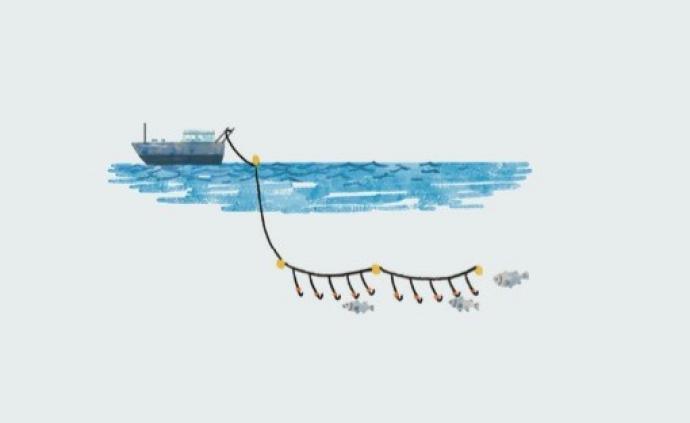 從愛知到昆明|過度捕撈下,海洋生機何去何從