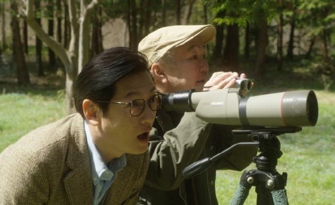 日剧《散步去》:零剧情的电视剧