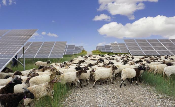 传统电企加速绿色转型,国家电投清洁能源装机占比50.8%