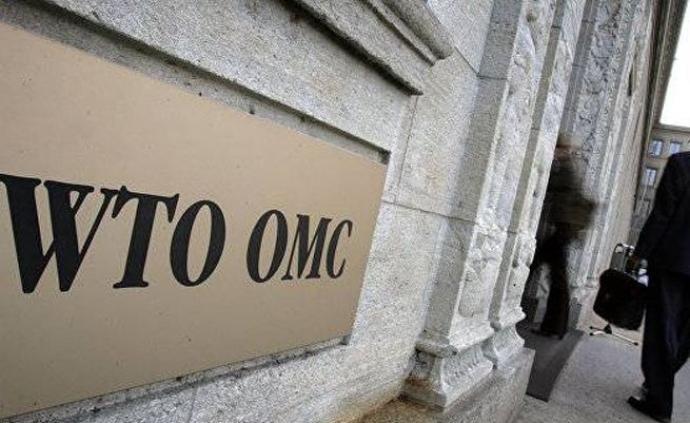 世貿組織新總干事遴選程序將于6月8日正式啟動