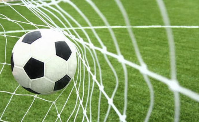 德甲、德乙联赛将在赛前为新冠逝者默哀