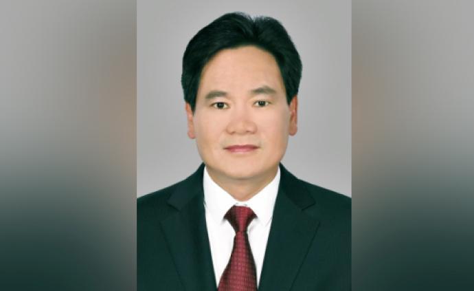 云南能源投資集團副總裁羅永隆接受審查調查