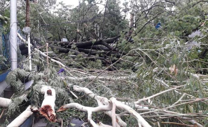 """?气旋风暴""""安攀""""已造成印度72人死亡"""