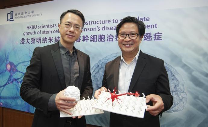 香港浸大发明纳米基质快速培养微型脑样结构,有助帕金森治疗
