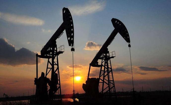 薛光林委員:建議加大力度建設國家石油、天然氣儲備設施
